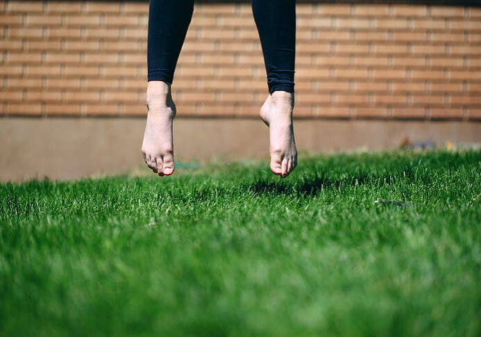 Fake Grass Cleaning Services